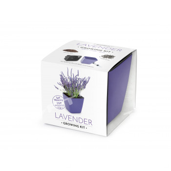 VYPĚSTUJ SI LEVANDULI, dárková sada se samozavlažovacím květináčem, FIALOVÝ 13X13 CM, DOMESTICO