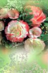 Blahopřání univerzální květiny, DITIPO