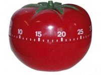 minutník RAJSKÉ JABLÍČKO plastový, 38.1005