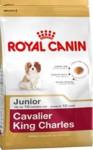 Royal Canin BREED Kavalír King Charles Junior 1,5 kg