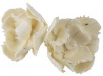Dekorace - Sola Mangolia Zig Zag 6 cm - 2 ks