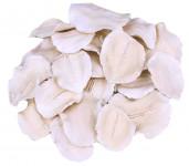 Dekorace - Jacaranda petal bělený 12 ks