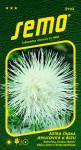 Semo Astra čínská - jehlicovitá Electric bílá 0,5g