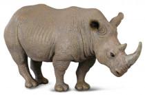 Nosorožec bílý