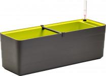 Plastia truhlík samozavlažovací Berberis - antracit + zelená 60 cm