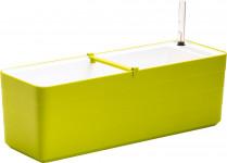 Plastia truhlík samozavlažovací Berberis - zelená + bílá 60 cm