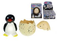 Tučňák líhnoucí a rostoucí ve vajíčku 6 cm