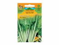 Osivo Mangold listový zelený LUCULLUS