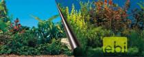 Pozadí akvarijní Beauty+Sea Duvo+ 80 x 40 cm - VÝPRODEJ