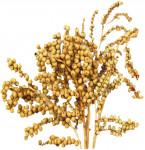 Dekorace - Canella cobs přírodní min. 30 g