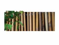 Rohož bambus 1,5x3m