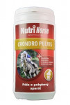 Nutri Horse Chondro Plus plv 1kg