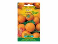 Osivo Rajče tyčkové ZLATAVA, oranžové
