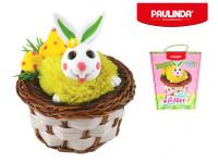 Paulinda Happy Easter 1x5 g + 2x8 g zajíček s košíkem a doplňky