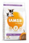 Iams Dog Puppy Small&Medium Chicken 3kg