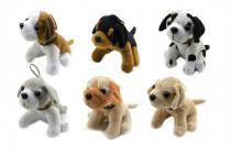 Pes plyš 10cm - mix variant či barev