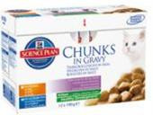 Hill's Feline Kitten kaps.CH+Fish -Multipack 12 x 85 g