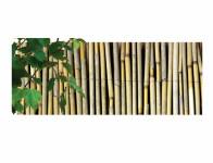 Rohož EXTRA rákos džunglový 1,2x5m