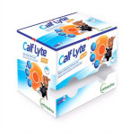 Calf-Lyte Plus 24 x 90 g
