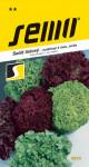 Semo Salát kadeřavý k řezu - Barevná směs odrůd 0,8g