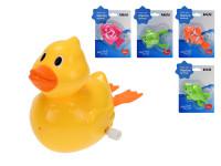 Zvířátko do vody 10-12 cm na klíček - mix variant či barev