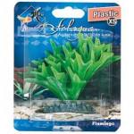 Rostlina plast Fiji Flamingo 9 cm