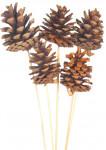 Dekorace - Blue pine na tyčce 2 ks