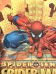 Dárková taška Disney L - Spiderman mix