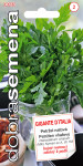 Dobrá semena Petržel naťová - Gigante D´Italia hladká 4g