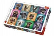 Puzzle Legrační psí portréty 1000 dílků 68,3x48cm