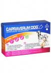 CAPRAVERUM DOG bones-joints 30tbl