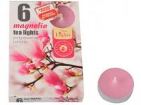 svíčka čajová vonná MAGNOLIA (6ks) (hoří 6x3-4hod)