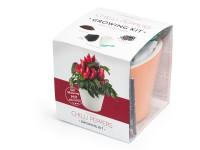 Vypěstuj si jalapeňo, samozavlažovací květináč oranžový 10x10 cm, Domestico