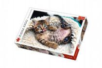 Puzzle Veselé kotě 1000 dílků 68,3x48cm