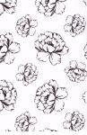 Balicí papír v roličce 2ks 70x100 bílá s květy