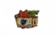 Pavouk/šváb lezoucí po skle plast 4cm v blistru - mix variant či barev