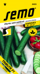 Semo Okurka salátová do skleníku - Tribute F1 velmi dl 10s