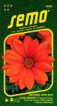 Semo Gazánie zářivá - New Day Clear Orange F1 15s