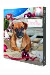 Adventní kalendář pro psy TR*