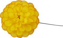Pomponka vosková - žlutooranžová (žlutá s oranžovým středem) - 35 ks