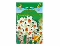 Narcis botanický GERANIUM 4ks