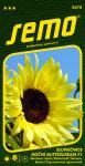 Semo Slunečnice roční - Buttercream F1 10s