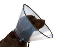 Límec Buster Comfort - clic collar 15cm 273903