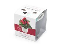 Vypěstuj si jalapeňo, samozavlažovací květináč černý 10x10 cm, Domestico