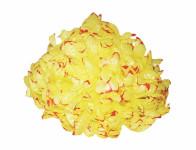 Květ voskový CHRYZANTÉMA žluto červený 14cm