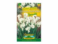 Narcis botanický PAPERWHITE 3ks