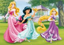 WD Princezny 24D flor puzzle