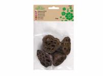 Dekorace sušiny LOTOS přírodní 4-6cm 4ks