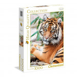 Puzzle 1000 dílků Tygr Sumaterský