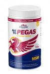 Artivit Pegas MSM plv. 720 g